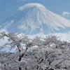 週末の富士山41