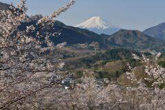 平日の富士山1090