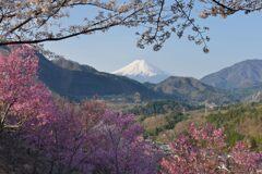 平日の富士山1086