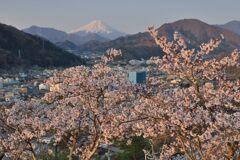 平日の富士山1084