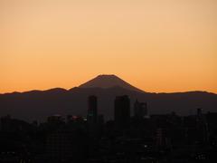 目黒の富士