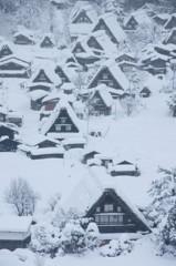 雪中合掌図