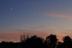 夕焼け空に三日月