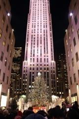 アメリカで一番有名なツリー