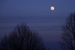 昇る14番目の月