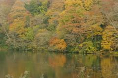 王池東湖かな?