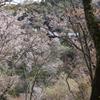吉野山 如意輪寺