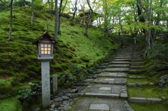京都旅行(常寂光寺)