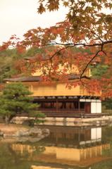京都旅行(金閣寺)