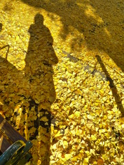 秋よバイバイまた来年♪