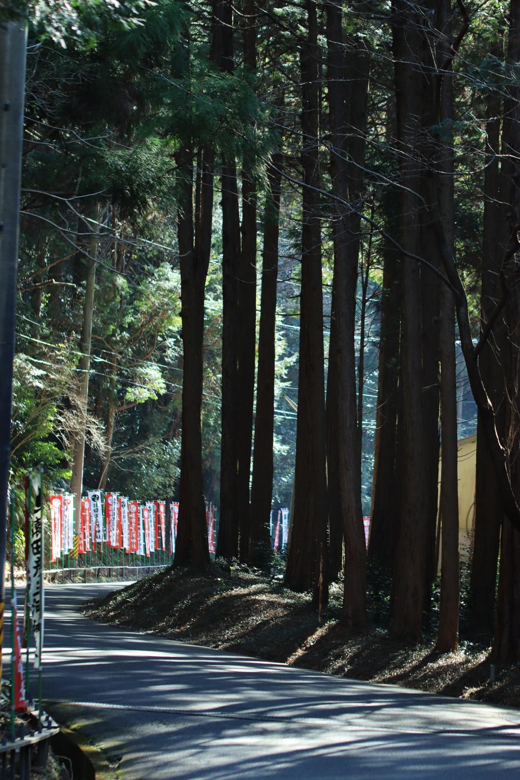 猿田彦三河神社にて