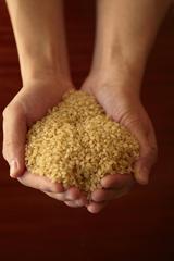 玄米を手に取る