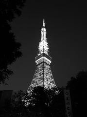 東京タワー(夜)