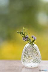 アゲラタムの花瓶