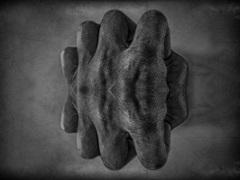 Fingers_1