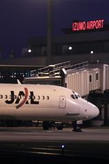 JAL&IZUMO AIRPORT