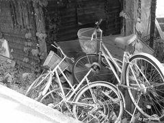 廃墟の自転車
