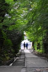 midoriトンネル