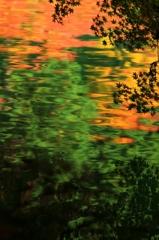水面に写る・・紅葉