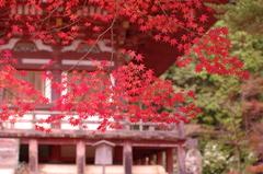 高雄神護寺2