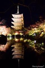 五重塔が写る