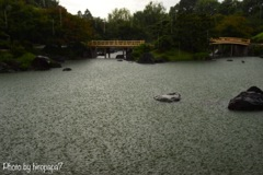 突然の豪雨②