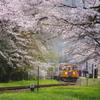 桜咲く駅~2