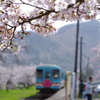 桜咲く駅~3