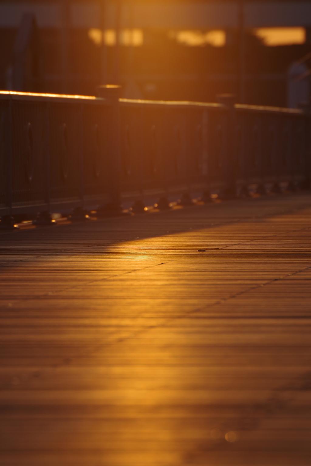 夕暮れヨットハーバー2