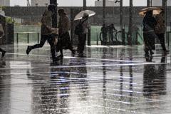 突然の雨 1