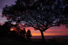 夕焼け琵琶湖3