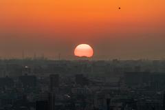 大阪湾に日が沈む 3