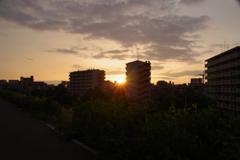 街中sunset 1