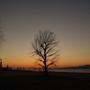 春の夕焼け 3