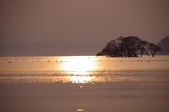 琵琶湖夕景4