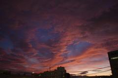 街中の夕日4