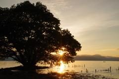 8月16日琵琶湖3