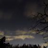 冬空夜景1
