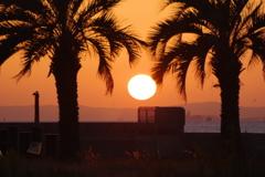 10月25日sunset 1