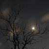 冬空夜景2