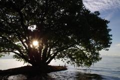 8月16日琵琶湖2