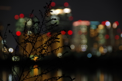 大阪夜景2