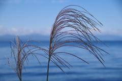 秋晴れ琵琶湖2