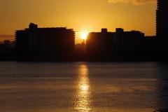 sunrise 1月4日大阪 1