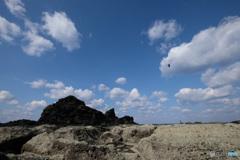 空と鳥(2)