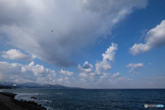 空と鳥(1)