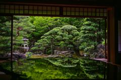 美しい庭~旧邸御室