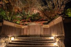 秋の夜の瑠璃光院