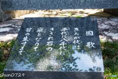 伊弉諾神宮-4