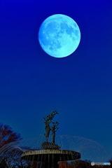 月夜カナール